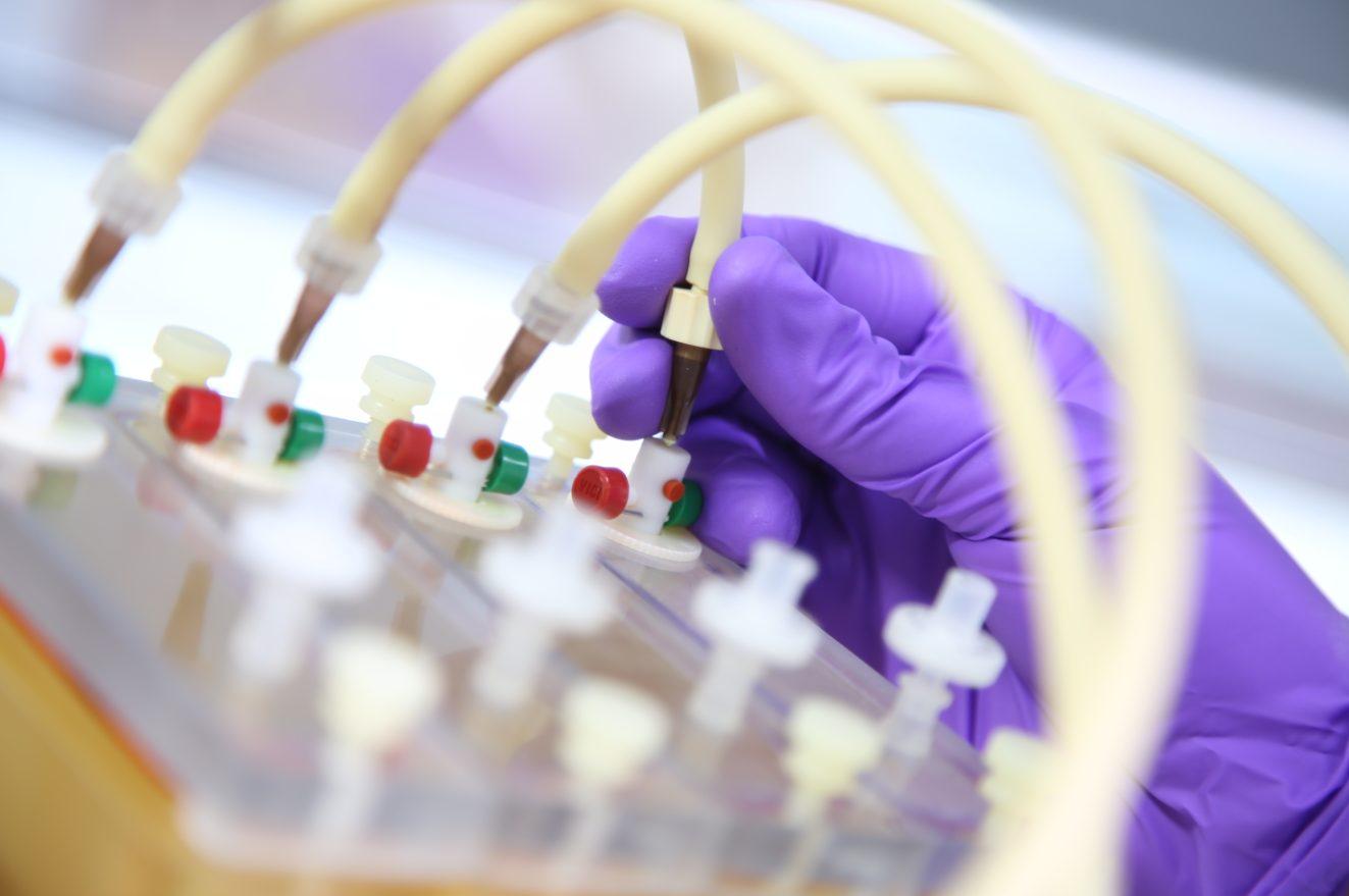 Perfectus Biomed attending Biofilm Science & Technology Meetings in Montana