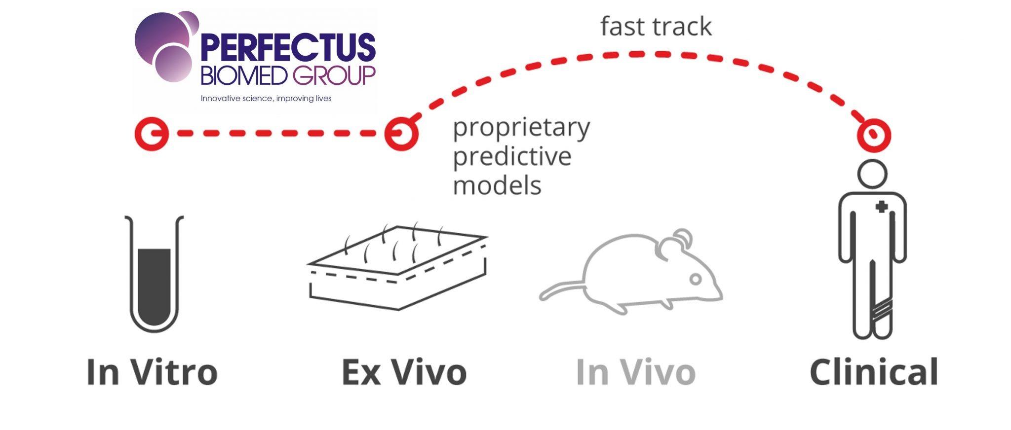 ex vivo and in vitro tissue testing